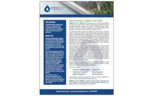 Americas Energy Services Company Profile